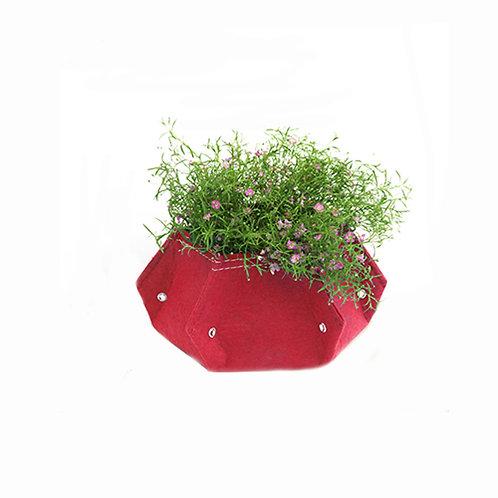 3 In 1 Kid  Mini Table Flower Planter (BTP-6M)