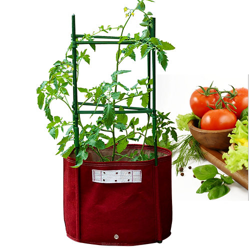 Tomato Grow Planter Bag(TOM-M/B)