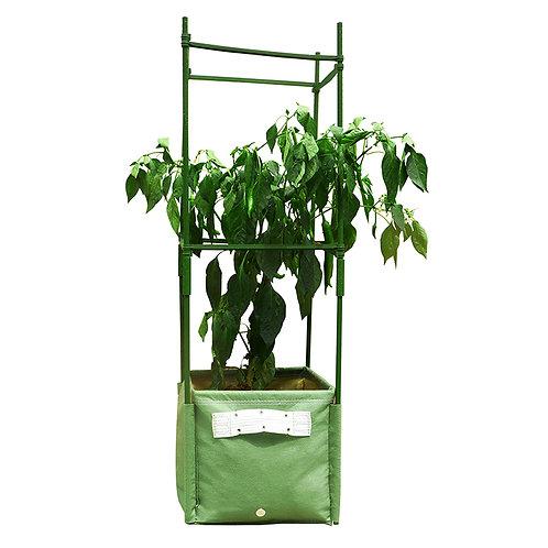 Pepper Square Planter Kit (PEP)