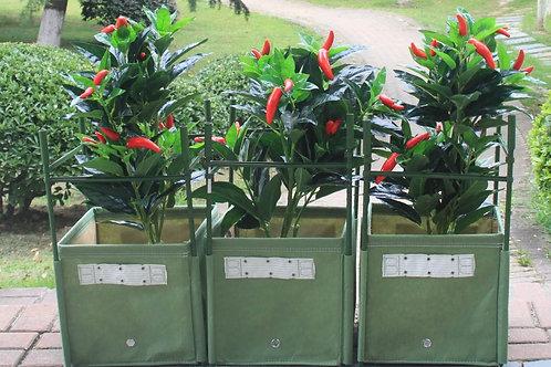 Bloombagz Pepper Planter Package Kit (F-C)