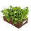 Thumbnail: BloomBagz Raised Bed