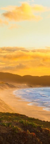 CSUMB_Monterey_Beach2 (1).jpg