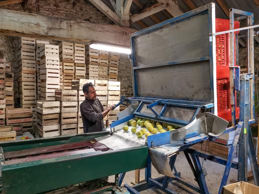 Calibrage à la station artisanale