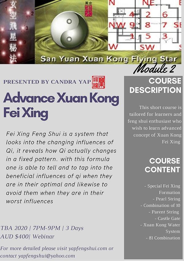 FeiXing-Advanced.jpg