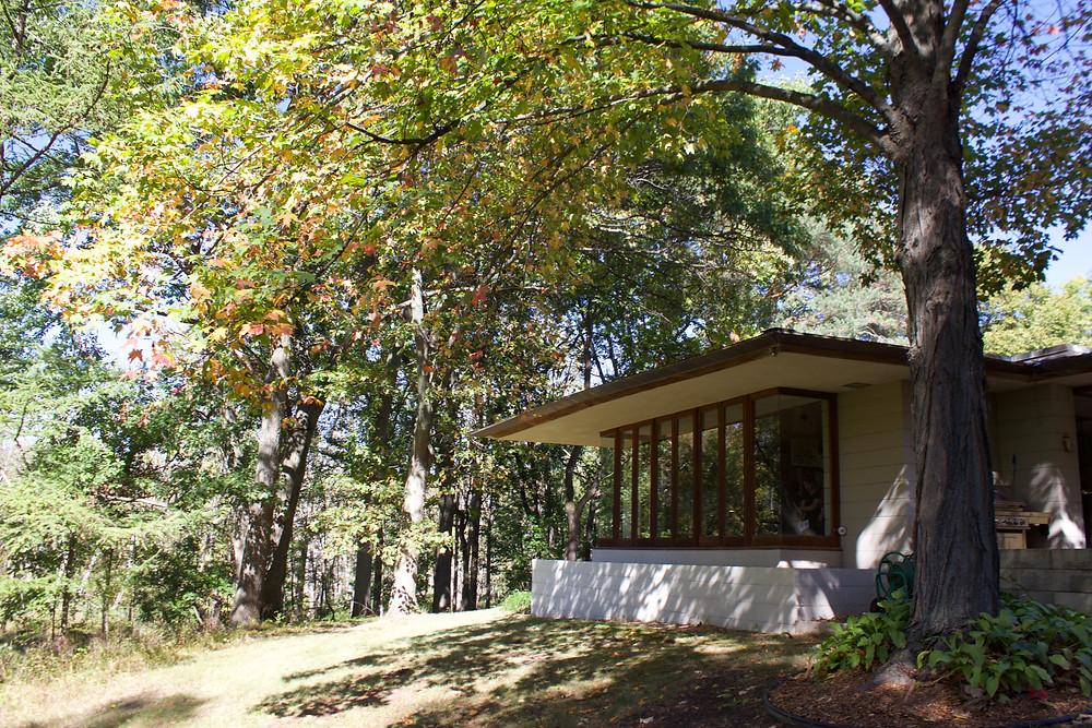 Brauner house Okemos Frank Lloyd Wright
