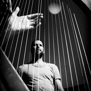 Roseraie harpe.jpg