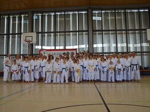 35 Jahre Karateschule Bad Säckingen - Jubiläumslehrgang mit Timo Gißler