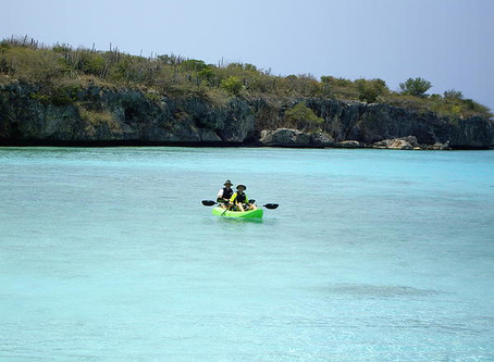 Have You Ever Paddled along Curacao's Amazing Coastline in a Kayak?