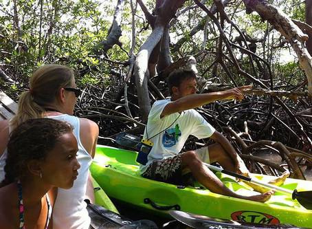 Ryan de Jongh's Kayak Experience