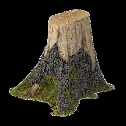 tree_stump_02_001_thumbnail_square0000.p