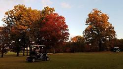 Disc Golf Nov 3 18