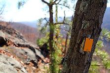 SBM trail blaze Pyngyp Mtn.jpg
