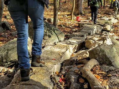Hiking in Sterling Forest State Park.JPG