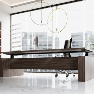 Executive Electronic Sit Stand Desk