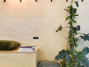 Ply Wall Feature