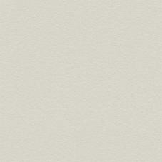 Oyster Grey