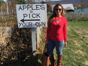 Apple Picking, Wine Hopping & Southern Comfort, All In One! Day trip from NYC!