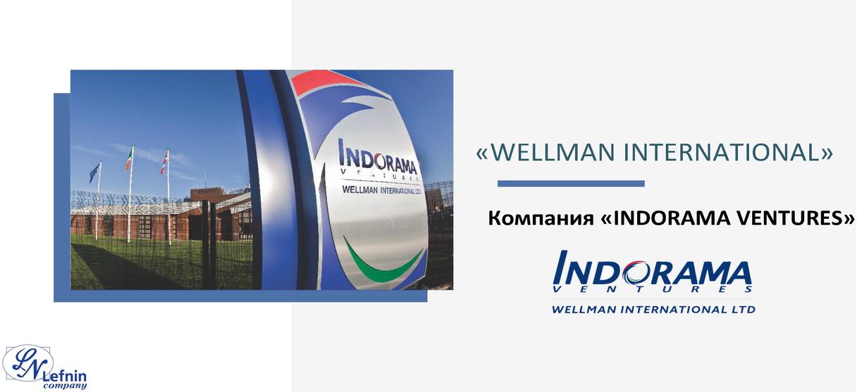 WELLMAN - INTRODUCTION PRESENTATION_Стра