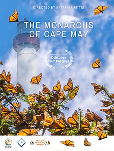 Monarchs of Cape May_POSTER.png