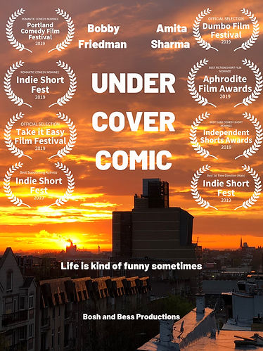 Under Cover Comic.jpg