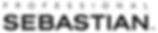 Professional sebastian logo