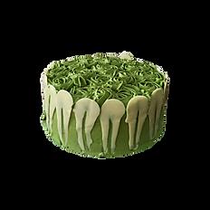 Matcha Green Tea Cake