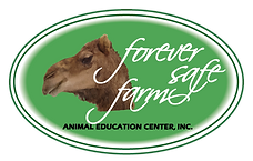 fsf_logo.png