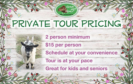 Private Tour flyer.jpg