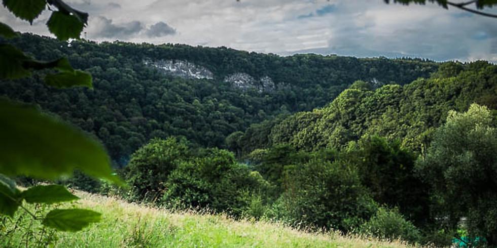 RANDO NATURE : La Roche aux Faucons