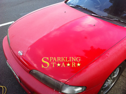 Difference with Machine Cut and Polish - Paint Correction by Sparkling Star Mobile Car Detailing in
