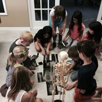 Junior Docs working togethter and racing to put their x-ray skeleton together