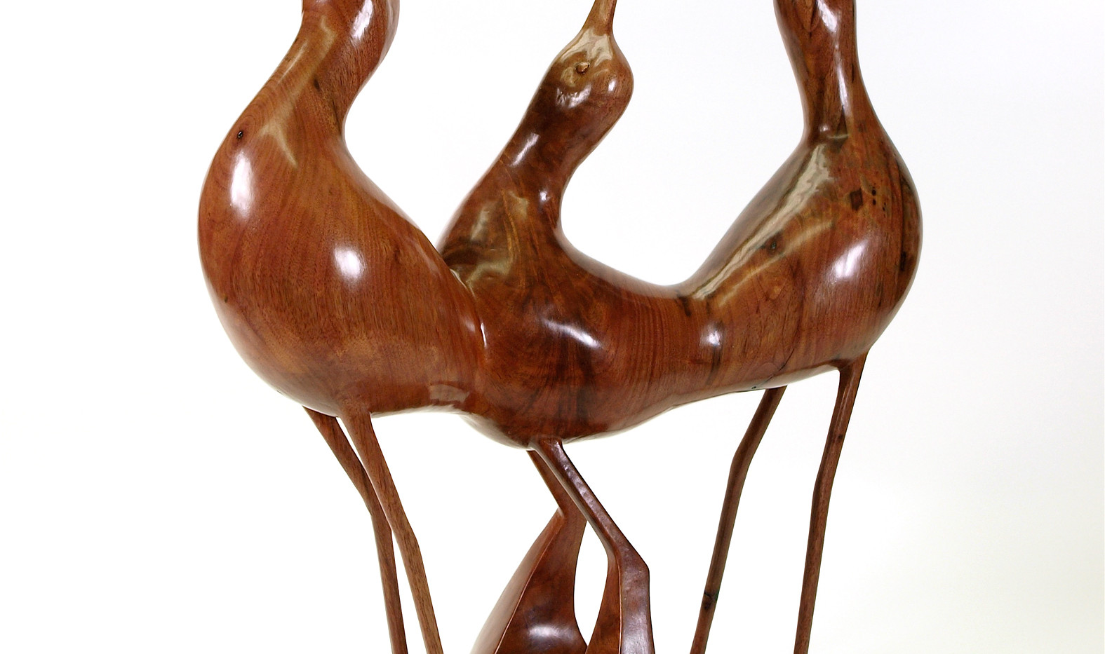 Avocets in Walnut (2010)