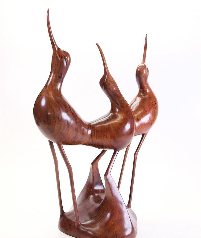 Avocets in Walnut (2010)