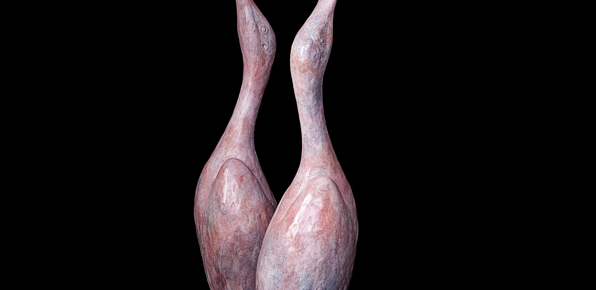 Spoonbill Ibis (2009)