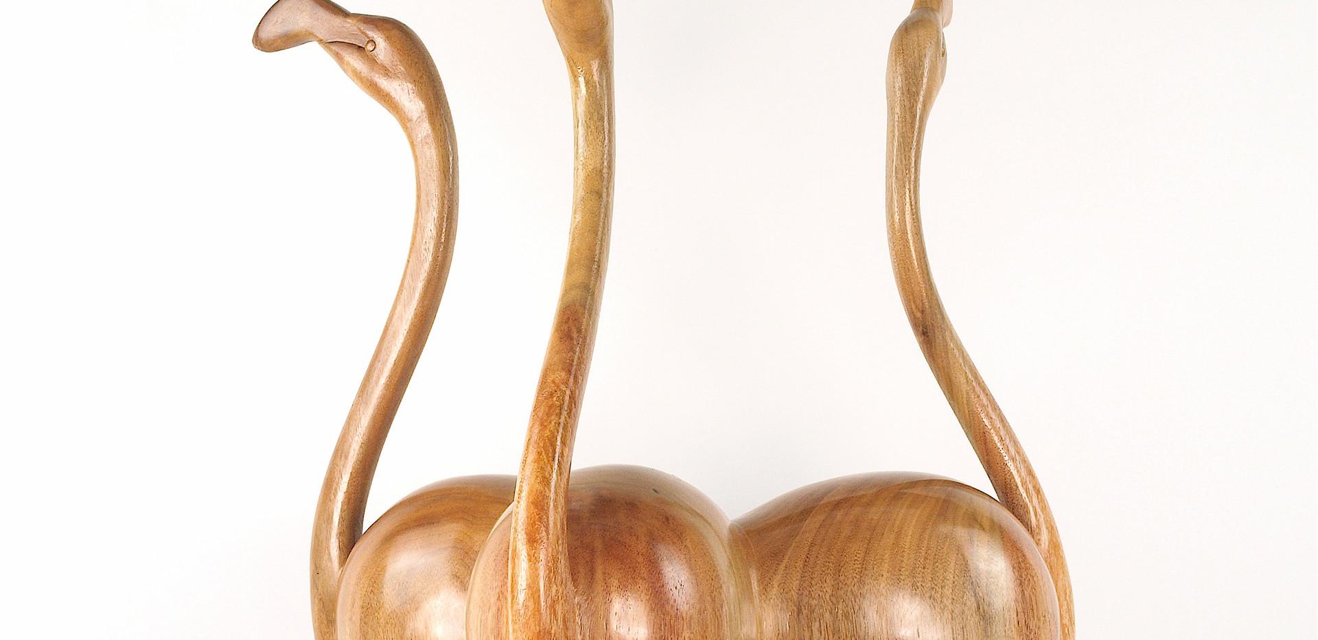 Flamingos (2013)