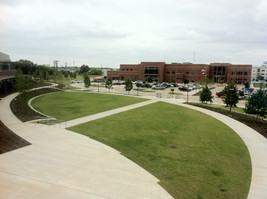 Open, flexible outdoor space with lovely landscaping. The Plaza.