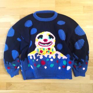 Jumper from the Jarol knitting pattern