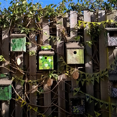 4.Birdboxes made with learning disabled adults (2019)