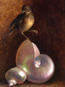 Bird With Shells