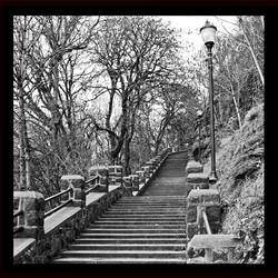 OC Stairs