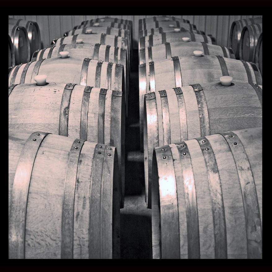 Wine Barrels b&w (2)