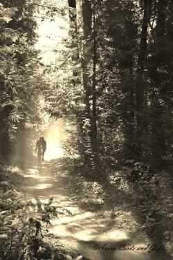 Hazy cyclist.jpg