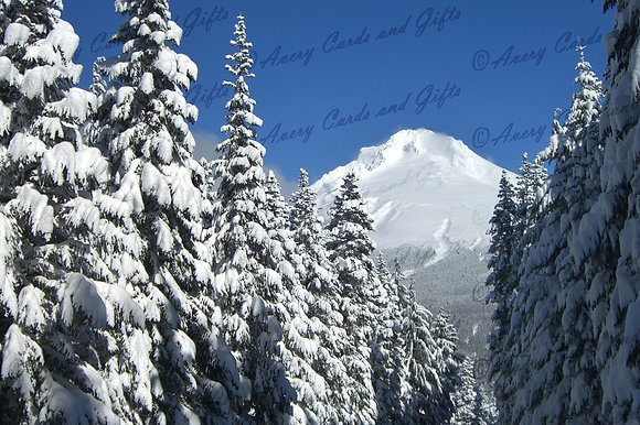 Skiing with Cheri