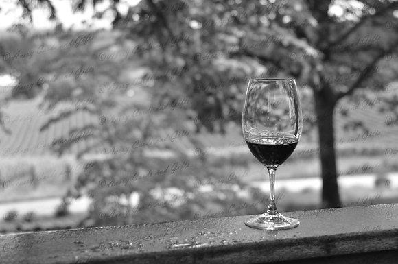 Sokol Blosser Wine Glass