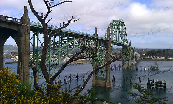 Newport Bridge-color