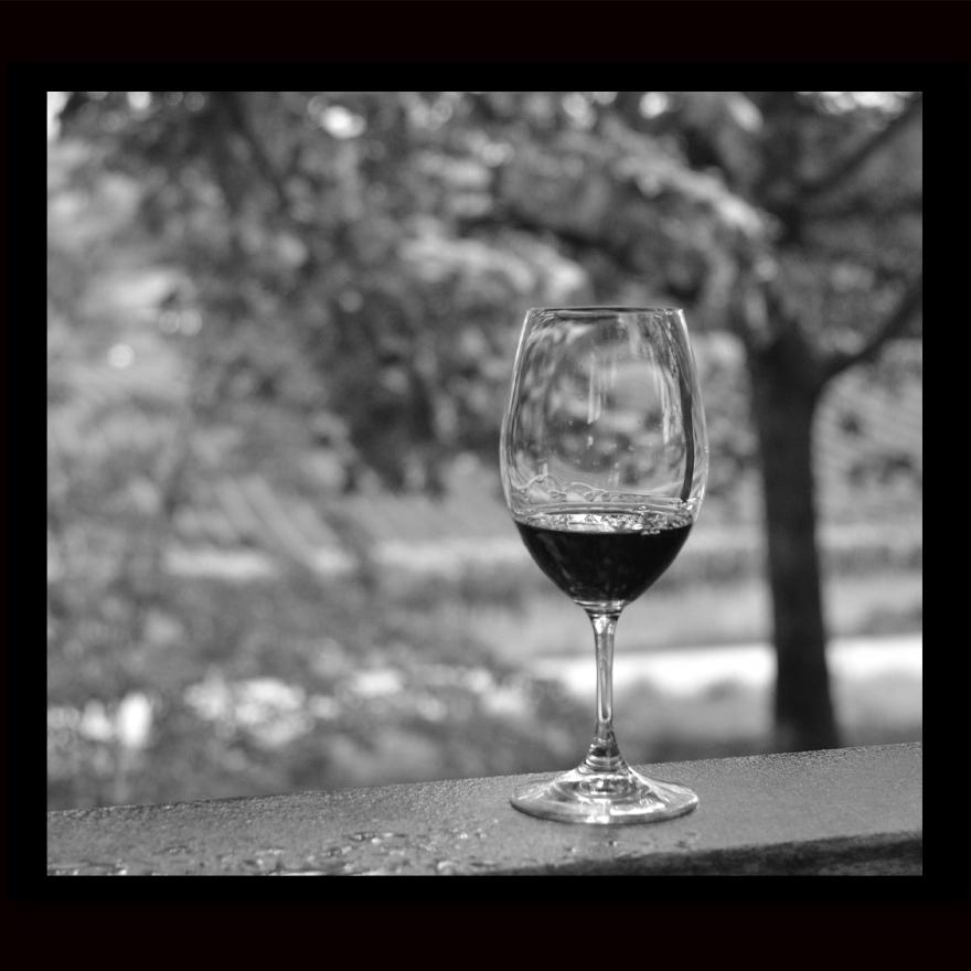 Sokol Blosser Wine.jpg