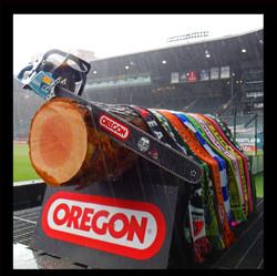 Timbers Victory Log (2)