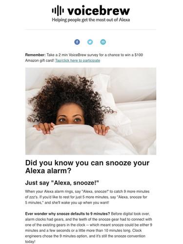 VoiceBrew_Snooze_Email.jpg