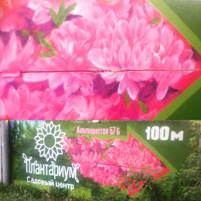 #graffiti #advertisement #flowers #forest #nature #artwork by #spraypaint #cans