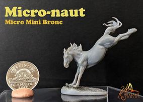 Micornaut-Smled.jpg